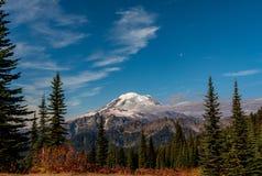 B?ti Rainier Below Blue Sky avec des pins photos stock