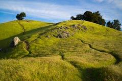 Bâti Tamalpais de sentier de randonnée photos libres de droits