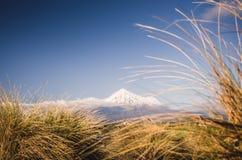 Bâti Taranaki, le Fuji du Nouvelle-Zélande Images libres de droits