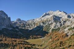 Bâti Triglav en soleil d'automne avec des mélèzes Photographie stock libre de droits