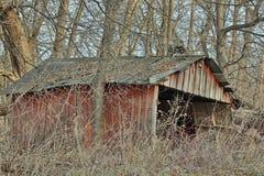 Bâtiment abandonné de ferme dans les bois Photos libres de droits