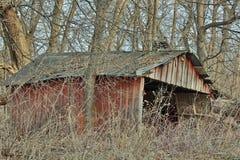 Bâtiment abandonné de ferme dans les bois Images libres de droits