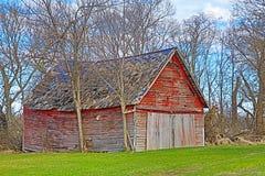 Bâtiment abandonné de ferme dans les bois Photo stock