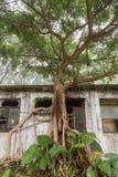 Bâtiment abandonné sur l'île de Lantau en Hong Kong Photographie stock libre de droits