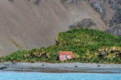 Bâtiment abandonné sur le rivage dans Jason Harbor, des phoques de fourrure sur la plage et le paysage indigène à l'arrière-plan, photos stock