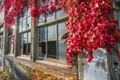Bâtiment d'usine d'Abandone Images stock
