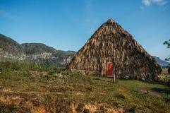 bâtiment de paille au Cuba, vallée de Vinales, photo stock