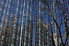 Bâtiment en verre à Zagreb Images libres de droits