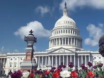 Bâtiment, fleurs et fontaine de capitol dans DC de Washington photographie stock libre de droits