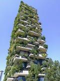 Bâtiment vertical de forêt Photo libre de droits