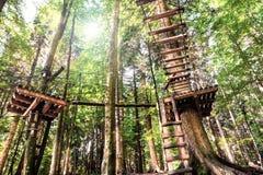 Bâtiments en bois dans la forêt pour s'élever photographie stock libre de droits