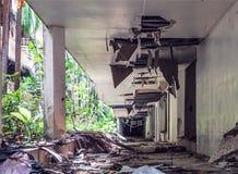 Bâtiments envahis par jungle Image stock