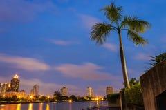 Bâtiments et arbre de noix de coco modernes Images libres de droits