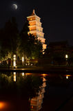 Bâtiments historiques bouddhistes de grande pagoda sauvage d'oie de Xi'an Photos stock