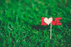 Bâton avec l'herbe verte de connexion d'amour Image stock