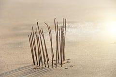 Bâton et fumée d'encens du burning d'encens Bâton d'encens brûlant sur la plage, dans la perspective de la mer Beau image libre de droits