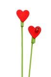 Bâton rouge en bois de forme de coeur Images libres de droits