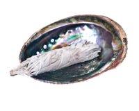 Bâton sage de tache dans la coquille polie lumineuse d'ormeau d'arc-en-ciel photographie stock libre de droits