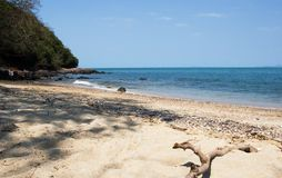 Bâton sur la plage Photographie stock
