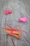 Bâtons de Canela sur les pétales roses de fond. Photographie stock