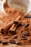 Bâtons de cannelle avec du cacao Photographie stock libre de droits