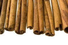 bâtons de cannelle de fond blancs Photographie stock