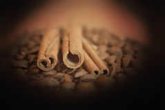 Bâtons de cannelle de witn de grains de café sur le fond foncé Images libres de droits