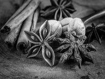 Bâtons de cannelle et anis d'étoile Photos stock