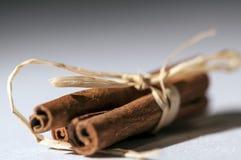 Bâtons de cannelle métallisés avec des noeuds de ruban Images libres de droits