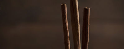 Bâtons de Cinamon Photographie stock libre de droits