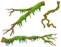 Bâtons en bois avec de la mousse verte illustration de vecteur