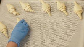 Bäcker, der Hörnchen auf Papier in Behälter für das Backen in Ofen auf Bäckereiküche einsetzt stockbild