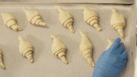 Bäcker, der Hörnchen auf Papier in Behälter für das Backen in Ofen auf Bäckereiküche einsetzt stockfotos