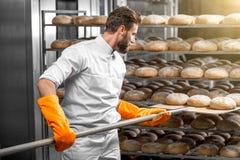 Bäcker, der mit Schaufelbrotlaiben an der Herstellung sich setzt Stockfotos