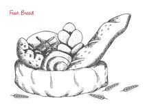 Bäckerei: Brot, Brötchen, Hörnchen, Laib auf weißem Hintergrund Lizenzfreies Stockbild