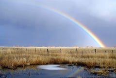 Bäckertal Regenbogen Stockbild