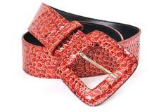 bälte isolerad röd white för läder Royaltyfria Foton
