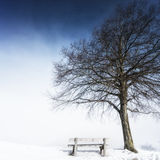 Bänk dimmig vinterdag 143 Royaltyfria Bilder