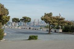 Bänk ett ställe som vilar, vinter i Baku, buxbomplan arkivfoton