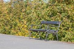 Bänk i en parkera, in med valnötträdet i nedgång Royaltyfria Foton