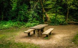 Bänk i en skog Royaltyfri Bild