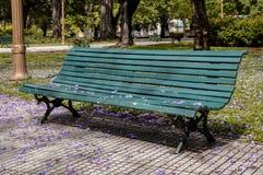 Bänk i en stadspark Arkivbild