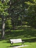 Bänk i en stadspark. Stad av Toronto. Kanada. Arkivfoto