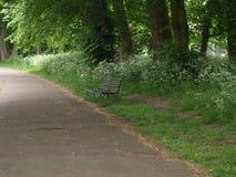 Bänk i parkera i London Arkivbild