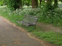 Bänk i parkera i London arkivbilder