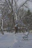 Bänk i parkera med snö Arkivfoton