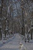 Bänk i parkera med snö Royaltyfri Foto