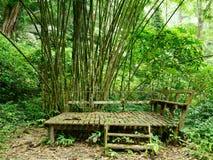 Bänk i skogen Royaltyfri Fotografi