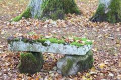 Bänk i skogen i höst Fotografering för Bildbyråer