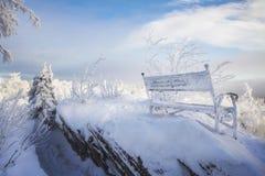 Bänk i snön bland träden i bergen i vinter frostig Januari morgon Royaltyfri Fotografi